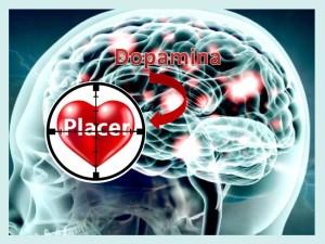 Placer y dopamina
